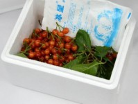 水果保鲜箱